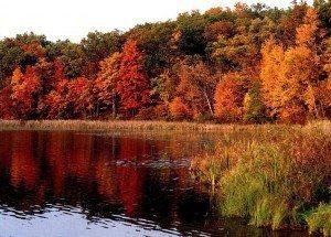 Balades en automne