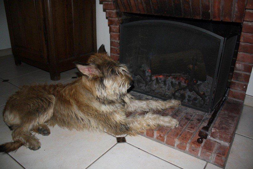 ode à la cheminée