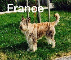 sur la route, mais encore en France