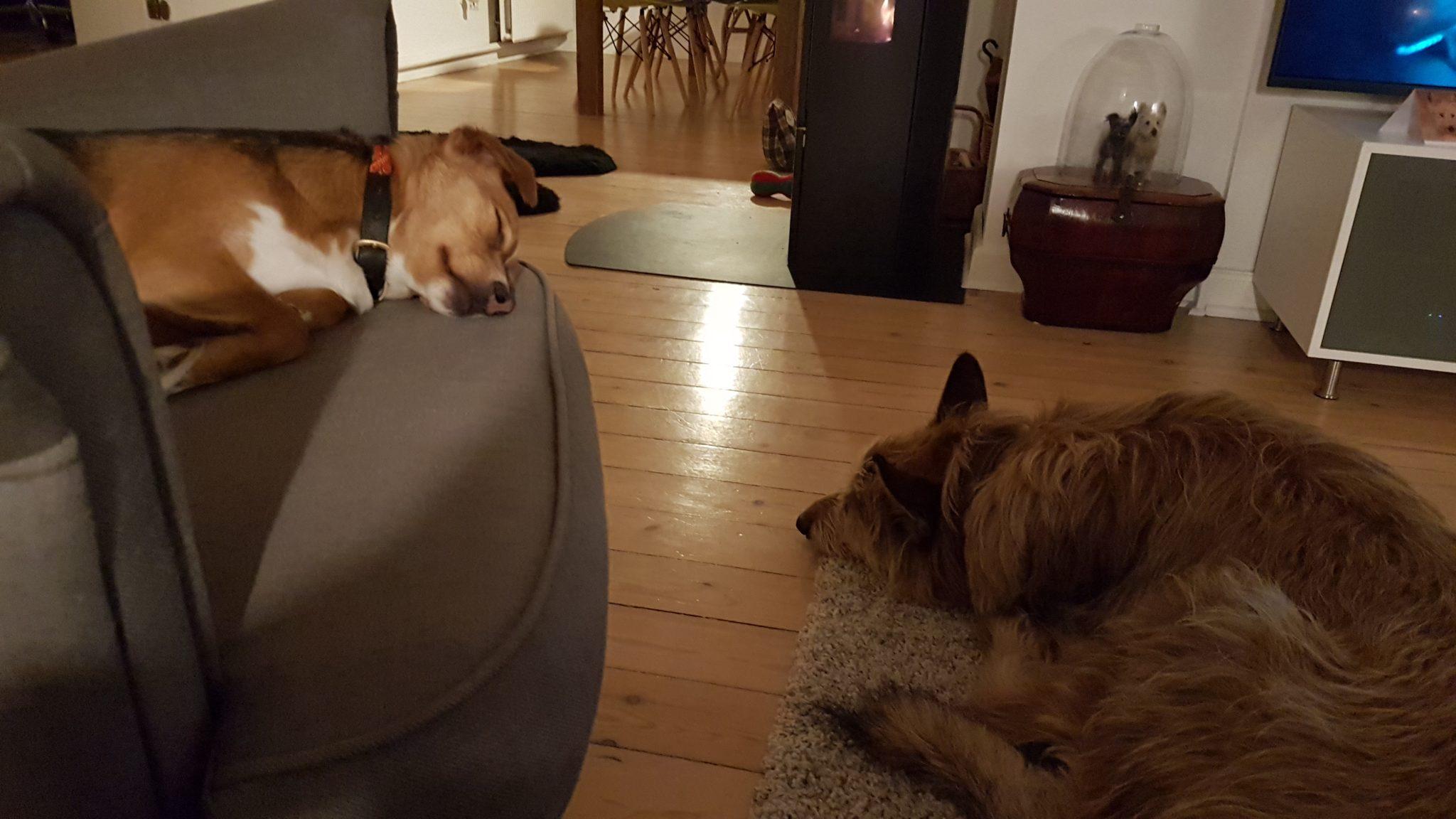 Tout le monde dort...